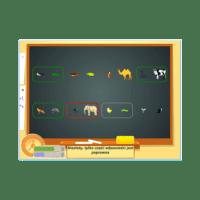Cognitomniac- dorosły - zestaw gier dla rozwoju kompetencji